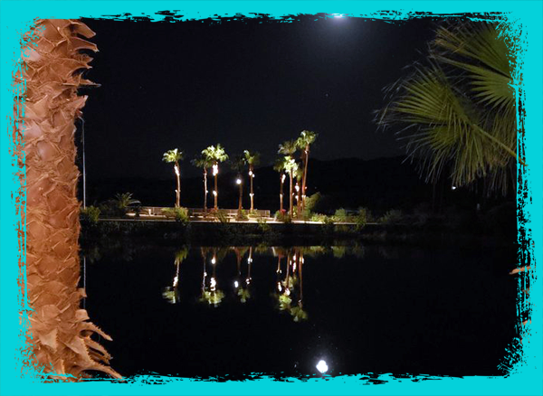 CoVeu's River View at Night